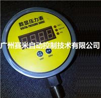 SM-300-Φ100數顯壓力表 SM-300-Φ100