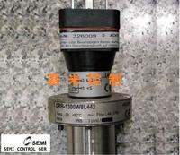 DRB-1300W8L442涡轮流量计、DRB流量计 DRB-1300W8L442