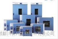 四川熱風循環系統DHG-9140電熱鼓風干燥箱 DHG -9140