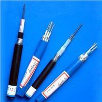 本安信号控制电缆ZR-IA-K2YVR ZR-IA-K2YV ZR-IA-K3YVR ZR-IA-K3YV 本安信号控制电缆ZR-IA-K2YVR ZR-IA-K2YV ZR-IA-K3YVR ZR-IA-K