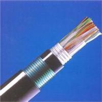 铠装通信电缆HYA53 轧纹钢带铠装通信电缆HYA53-阻燃通信电缆ZR-HYA53