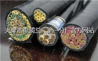 矿用控制电缆MKVVR-450/750V 500V 矿用控制电缆MKVVR-450/750V 500V