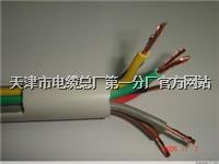 带钢丝绳的PVC行车控制电缆 KVVRC 带钢丝绳的PVC行车控制电缆 KVVRC