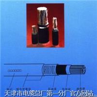 KVVRC 自承式控制电缆 KVVRC行车控制电缆 行车线 KVVRC 自承式控制电缆 KVVRC行车控制电缆 行车线