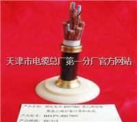 PTY23信号电缆 PTY23信号电缆