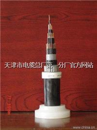ZA-RVV22钢带铠装软电缆3X16+1 ZA-RVV22钢带铠装软电缆3X16+1