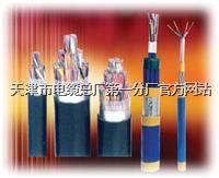 矿用防爆通信电缆PUYV39-1 矿用防爆通信电缆PUYV39-1