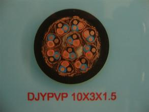 DJYPV仪表信号电缆 DJYPV仪表信号电缆
