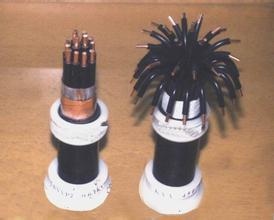 煤矿用控制电缆MKVVP22 煤矿用控制电缆MKVVP22