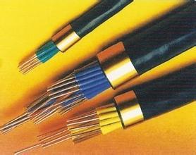 厂家直销屏蔽控制电缆KVVP22 厂家直销屏蔽控制电缆KVVP22