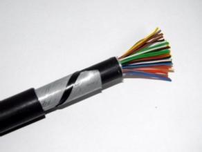 铠装阻燃计算机屏蔽电缆 ZR-DJYPVP22 铠装阻燃计算机屏蔽电缆 ZR-DJYPVP22