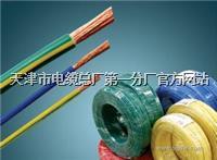 10对充油电缆-HYAT 10*2*0.5电缆,10对充油电缆-HYAT 10*2*0.5电缆价格 10对充油电缆-HYAT 10*2*0.5电缆,10对充油电缆-HYAT 10*2*0.5电缆价格