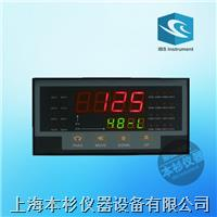 上海本杉IBS-X105高精度智能多路巡检仪 IBS-X105