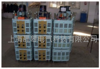 TESGC2系列三相电动调压器