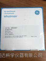 whatman玻璃纤维滤纸GF/A1820-6537  1820-6537