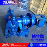 上海博生DBY-10型电动隔膜泵