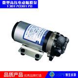DP型微型12V/24V电动隔膜泵