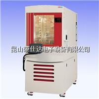 高低温交变湿热实验箱 RSD-225JS