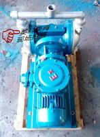 不锈钢电动隔膜泵DBY电动隔膜泵304电动隔膜泵