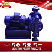 流体衬氟电动隔膜泵 DBY-40CF46