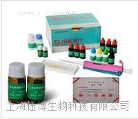大鼠血管紧张素转化酶(ACE)大鼠ELISA试剂盒报价