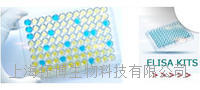嗜酸粒细胞趋化因子(ECF)检测试剂盒 48T/96T盒
