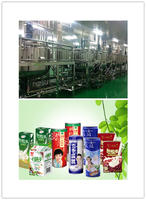 中小型植物蛋白饮料生产线