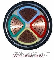 耐高温铜带计算机电缆DJFFP2(价格实惠) MHYV-MHYVR-MHYVRP-矿用信号电缆-矿用监测电缆
