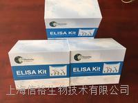 人原纤蛋白3(FBN3)试剂盒