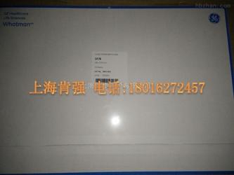 whatman 沃特曼 GF B玻璃纤维滤纸 460mm 570mm 货号1821-915