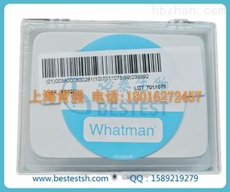 whatman 800281 Nuclepore聚碳酸酯膜 孔径0.4um 直径19mm