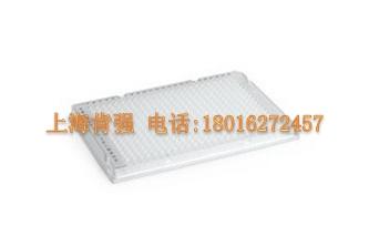 PCR耗材-384孔板 HSP3801 bio-rad 伯乐