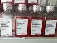 Sigma培养基(DMEM)高糖液体培养基D5796现货