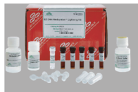 Zymo EZ DNA Methylation- Lightning Kits