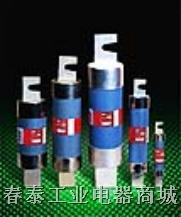 圆管刀形触头熔断体 RO20、FRS-R、OT200、OT100系列