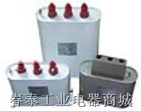 自愈式低压并联电容器 BSMJ、BCMJ、BZMJ系列