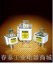 方管螺栓连接式半导体器件保护用快速熔断器 RS、RSG系列