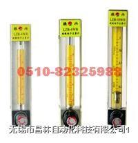 LZB-3WB,LZB-4WB,LZB-6WB,LZB-10WB   玻璃转子流量计 LZB-3WB,LZB-4WB,LZB-6WB,LZB-10WB