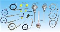 TS1-K-B-10,TS1-K-C-10,TS1-K-Q-10,TS1-K-R-10热电偶 TS1-K-B-10,TS1-K-C-10,TS1-K-Q-10,TS1-K-R-10