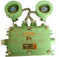 防爆照明应急两用灯    BCJ-Z125/20□      BCJ-B200/20□ BCJ-Z125/20□      BCJ-B200/20□