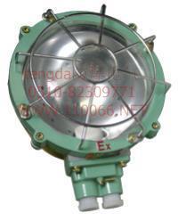 防爆吸顶灯    BXL-100 BXL-100