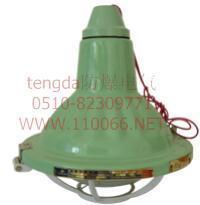 增安型防爆灯    BGL-Z125         BGL-B200 BGL-G125         BGL-L100