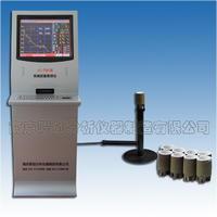 炉前铁水成分测定仪,碳硅分析仪器 LC-TS6型