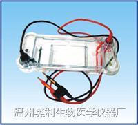 BG-subMINI型迷你水平电泳仪 BG-subMINI型