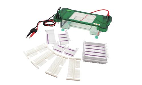 君意JY-SCZ2+垂直电泳槽|伯乐进口品质|全新设计|上海现货