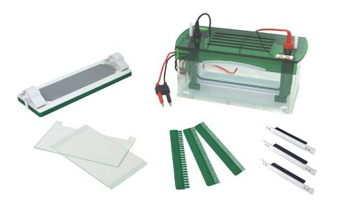君意JY-Mini-P4垂直电泳槽|伯乐进口品质|全新设计|上海现货
