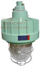 隔爆型防爆灯    CCD-250        CCD-400