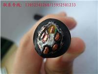 特种屏蔽信号电缆JXVP-P补偿电缆