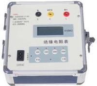 DZY-2000自动量程绝缘电阻表 DZY-2000